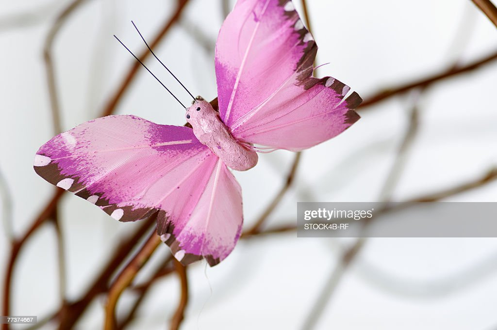 Synthetic butterfly hanging on a branch, close-up, selective focus : Photo