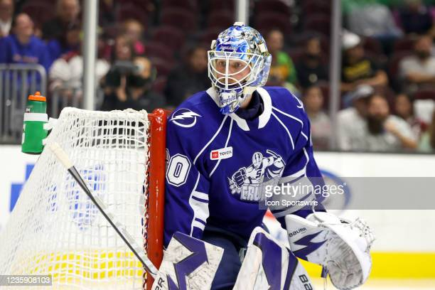 Syracuse Crunch goalie Hugo Alnefelt in goal during the third period of the American Hockey League game between the Syracuse Crunch and Cleveland...