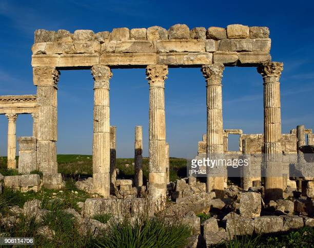 Syria Apamea Ancient Greek and Roman city Northern door 2nd century AD in the last section of the cardo maximus