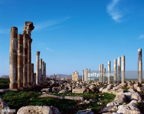 Syria Apamea View of the Cardo Maximus colonnade avenue Roman work 2nd century Photo before civil war