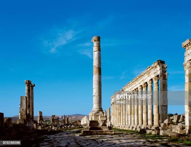 Syria Apamea Votive column in the Cardo Maximus Roman work 2nd century Photo taken before civil war