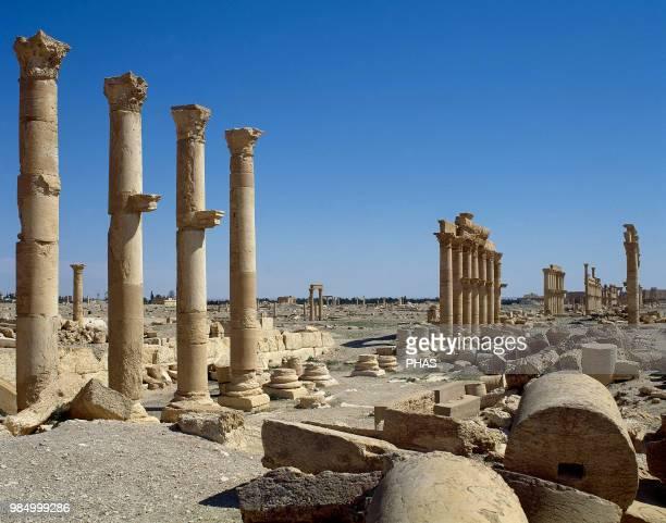 Syria. Palmyra city. The Great Colonnade. Roman Empire ruins. Tadmur, Homs. Photo before Syrian Civil War.