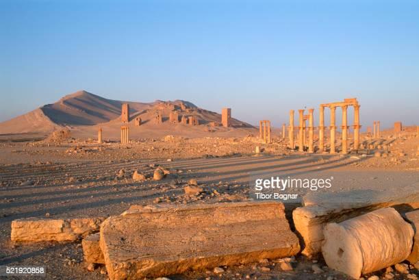 syria, palmyra, funerary towers - palmyra foto e immagini stock