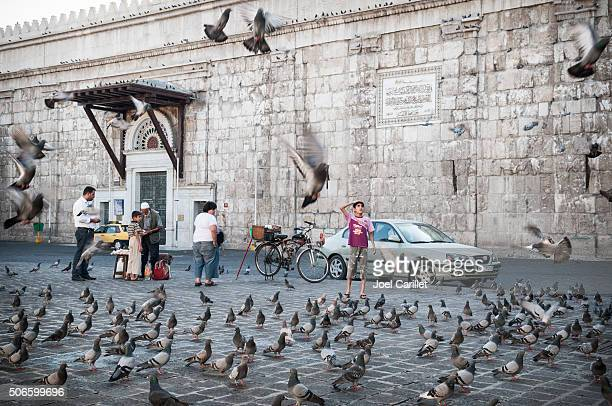 syrian boy and flying pigeons in damascus, syria - damascus stock pictures, royalty-free photos & images