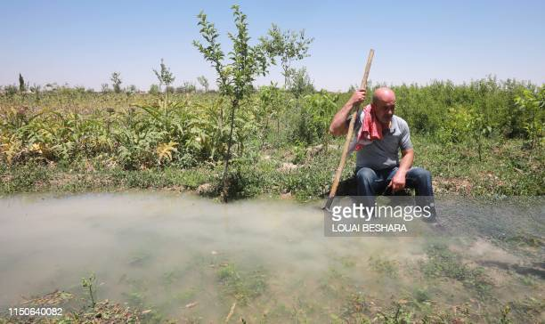 Syrian farmer Radwan Hazaa walks rests along an irrigation canal in Deir al-Asafir in Syria's southwestern region of Eastern Ghouta, on June 10,...