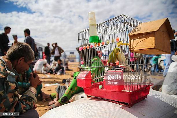 Syrian Kurdish refugees wait with their belongings after crossing into Turkey near the southeastern Turkish town of Suruc on September 30 2014 in...