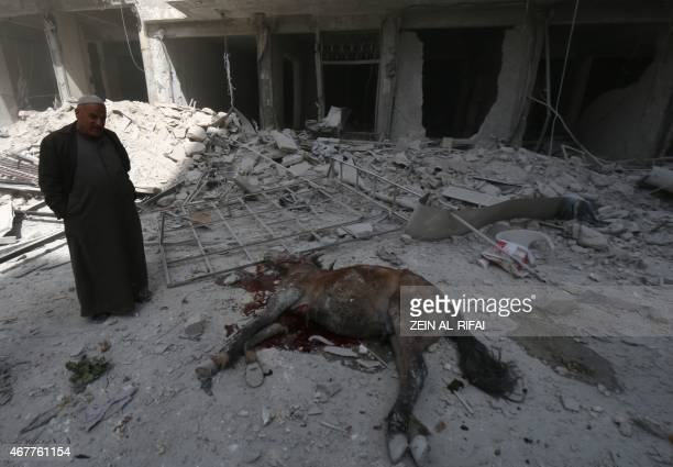 A Syrian man looks at a dead horse lying in a destroyed street following reported air strikes by government forces on the eastern Shaar neighbourhood...