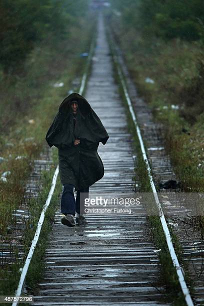Syrian migrant walks alone through rain and low temperatures to make his way to Hungary from Serbia near the town of Kanjiza on September 10 2015 in...