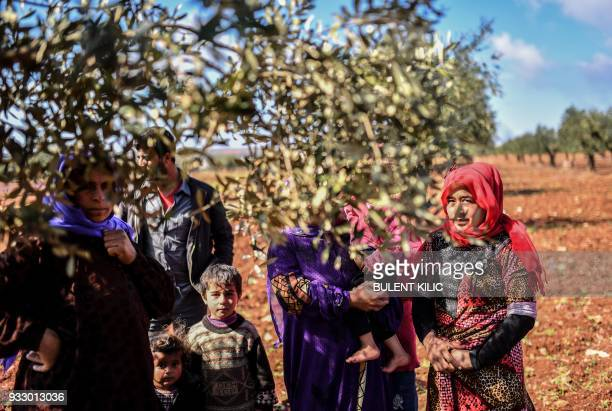 Syrian people look on behind an olive tree branch as they arrive at a check point in the village of Anab ahead of crossing to the Turkishbacked...