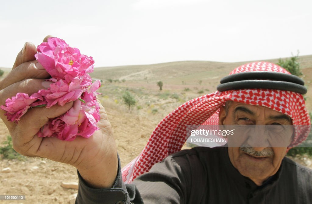 Syrian villager picks from his field roses used in the traditional production of medical and food products in village of al-Mrah, 60 kms north of the capital Damascus, on May 17, 2010. The village is famous for the cultivation of what is known as the Damascus rose, which is also used in producing cosmetics.