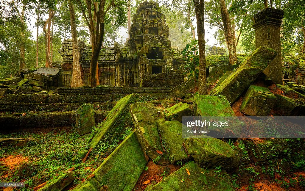 Ta Nei, Siem Reap, Cambodia : Stock Photo