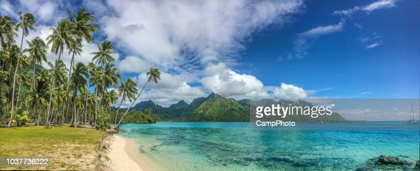 taahiamanu beach panorama view - tahiti stock pictures, royalty-free photos & images