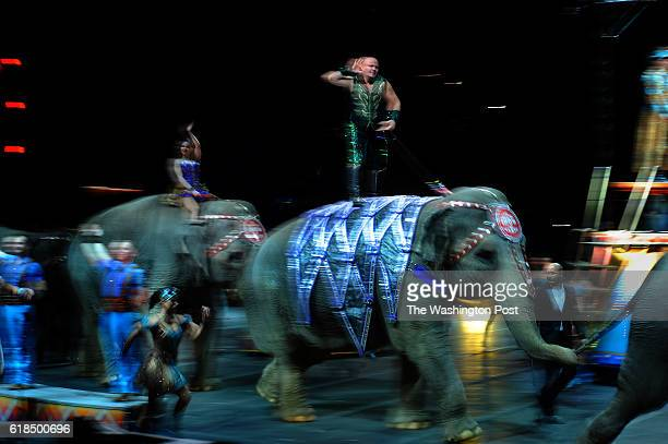 Tabayara Maluenda standing on Tonka the elephant encourages the crowd to cheer for the elephants at the show held at Verizon Center in Washington DC...