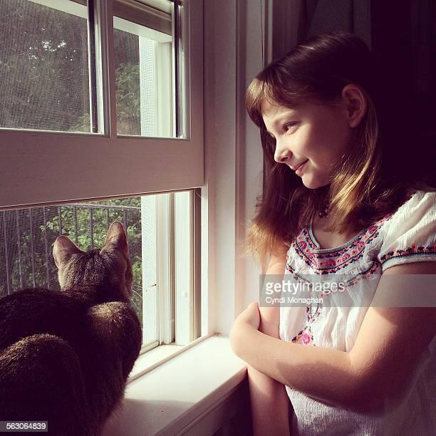 Tabby Cat and Little Girl