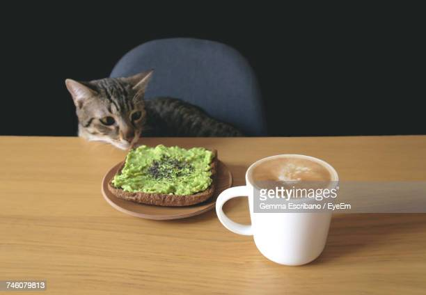 Tabby Cat Looking At Toasted Bread And Coffee Cup On Table Against Black Background