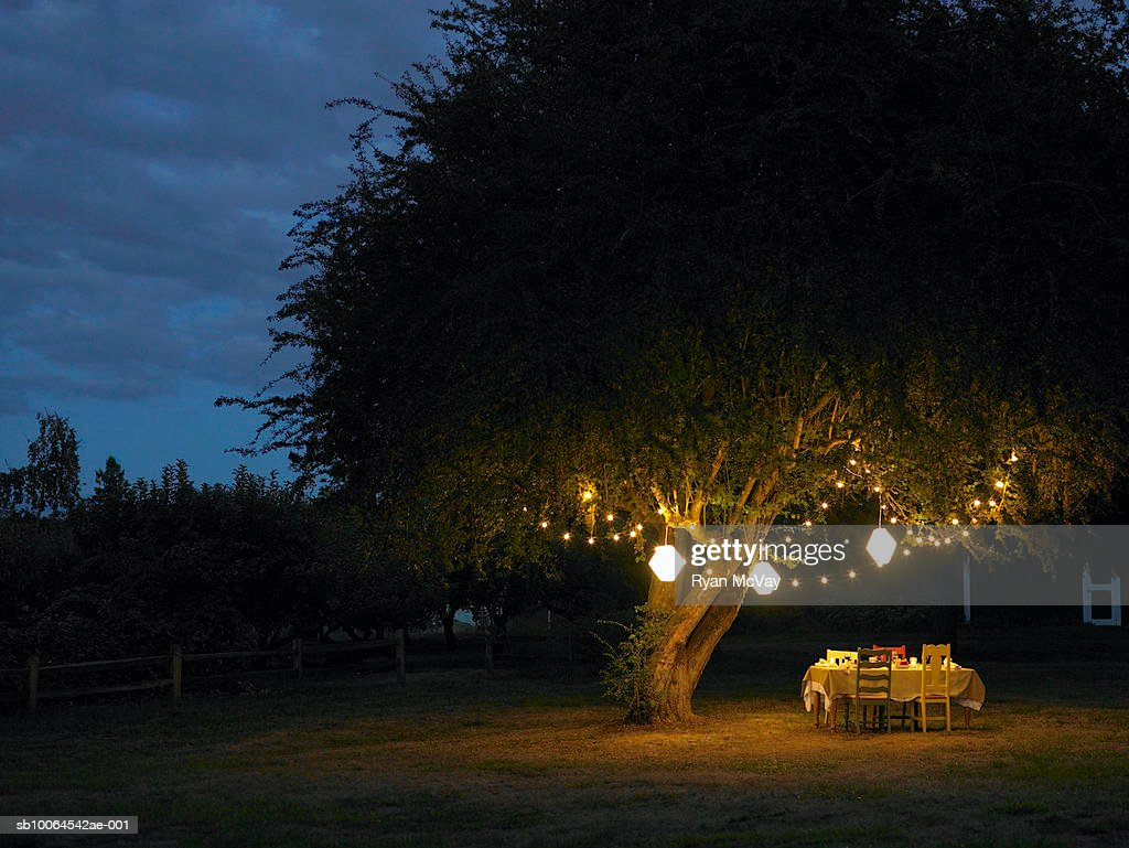 Table in yard illuminated by lanterns hanging on tree : Stock Photo