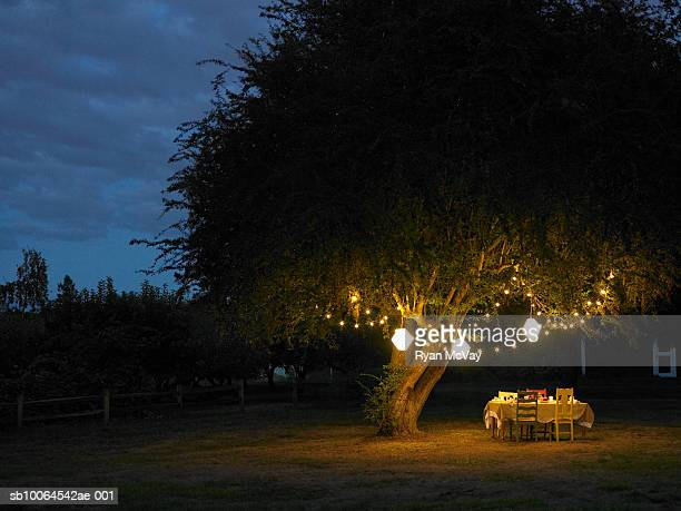 table in yard illuminated by lanterns hanging on tree - verlicht stockfoto's en -beelden