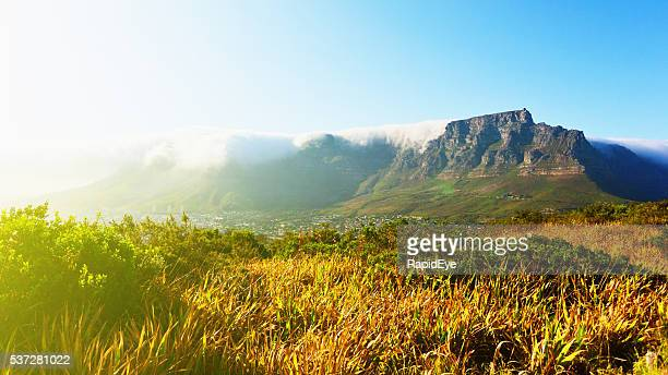 Table Mountain Cape Town, tablecloth, travel, tourism, beautiful, scenics, landmark