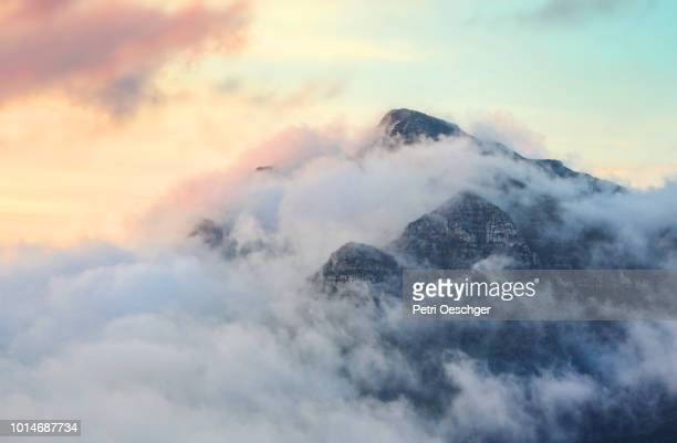 table mountain. - província do cabo ocidental imagens e fotografias de stock
