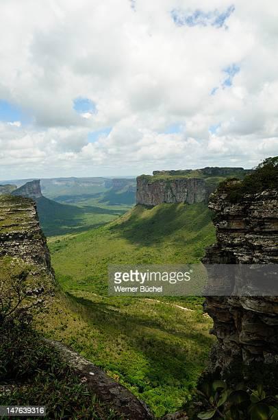 table mountains in chapada diamantina - parco nazionale di chapada diamantina foto e immagini stock