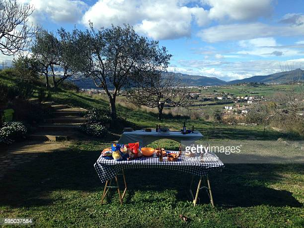 table prepared for a picnicking