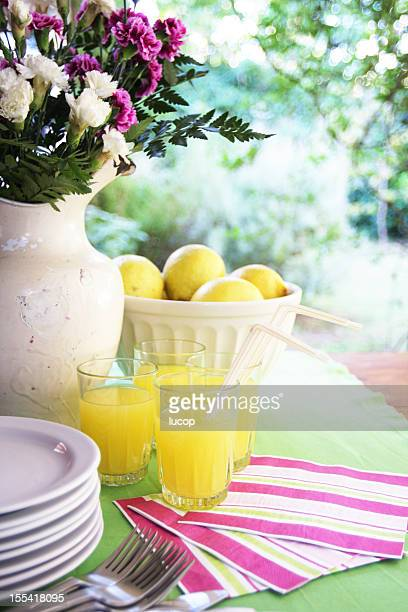 Table setting with lemonade, pink and green deco at garden