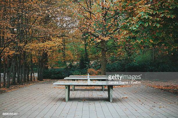 Table Tennis Tables In Park During Autumn