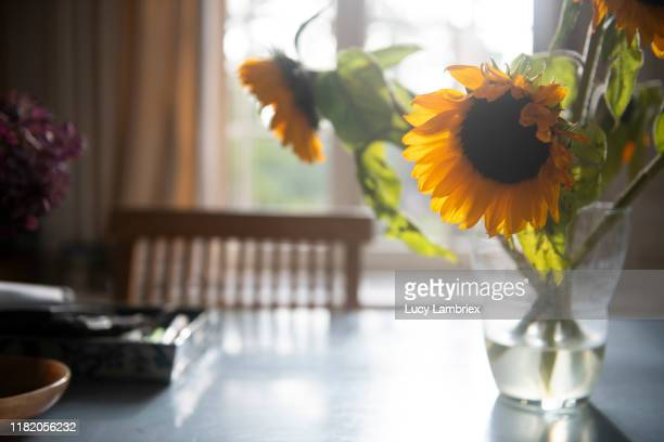 table with flowers in late afternoon sunlight - lucy lambriex stockfoto's en -beelden