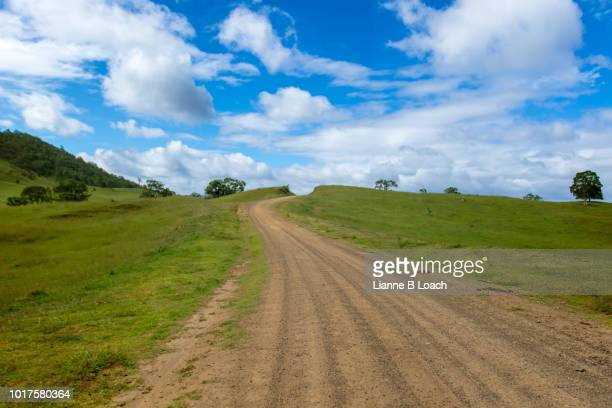 tableland dirt road - lianne loach stock pictures, royalty-free photos & images