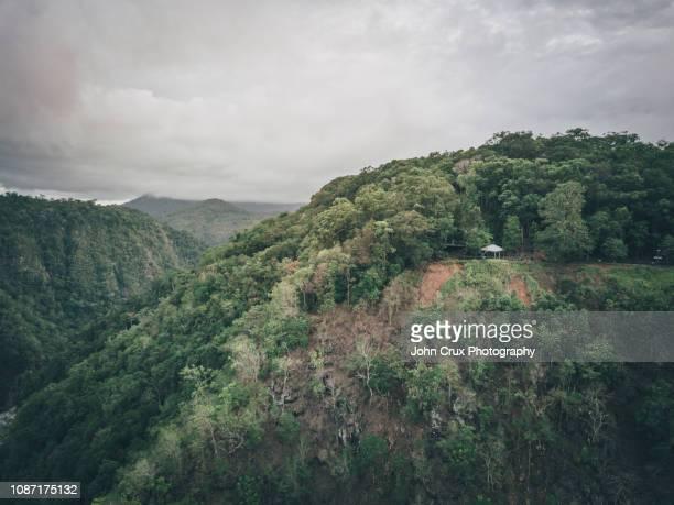 tablelands rainforrest - atherton tableland stock pictures, royalty-free photos & images
