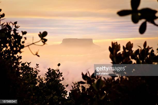 montaña armado aprada tepuy en sunrise.  el mundo perdido - la gran sabana fotografías e imágenes de stock