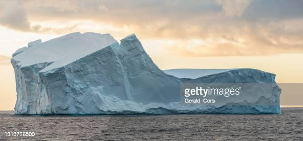 tabular iceberg from a ice shelf, near paulet island, antarctic peninsula, antarctica - antarctic sound stock pictures, royalty-free photos & images