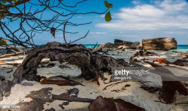 Tachai beach