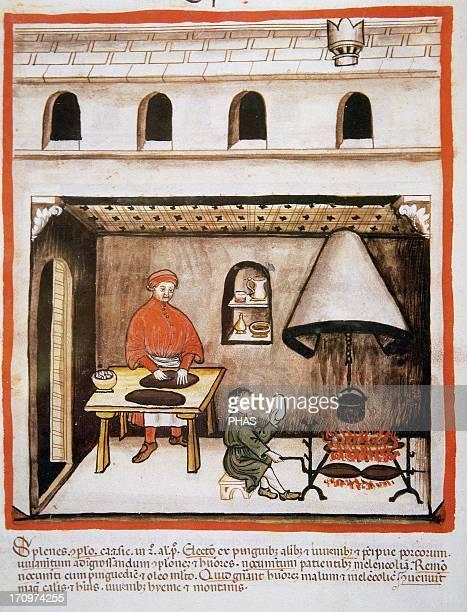 Tacuinum Sanitatis 14th century Medieval handbook of health Fireplace Cooking pork Miniature Fol 80v
