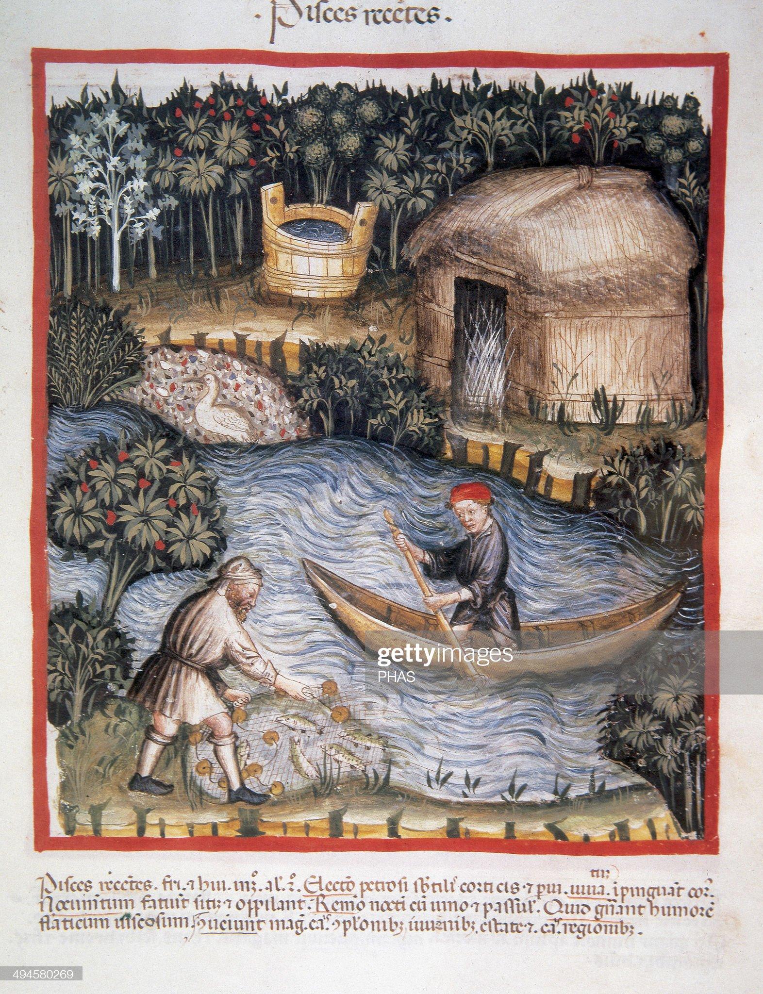 Tacuinum Sanitatis. 14th century. Medieval handbook of health : Foto di attualità