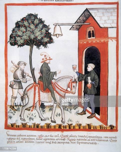 Tacuinum Sanitatis 14th century Medieval handbook of health Servant offering a glass of wine to his master on his return home Folio 87V