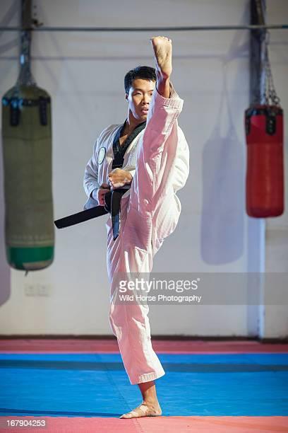 taekwondo high kicking - taekwondo fotografías e imágenes de stock