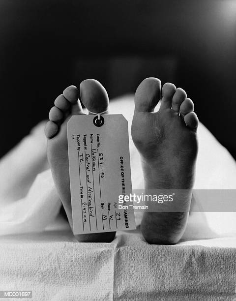tagged human cadaver, low section, close-up of foot (b&w) - morgue feet stock photos and pictures