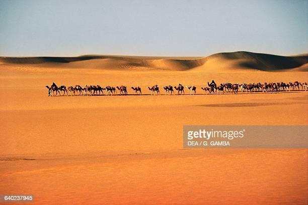 Taghlamt salt caravan route transporting salt from Bilma in Agadez near the Fachi oasis Tenere desert Air and Tenere National Nature Reserve Sahara...