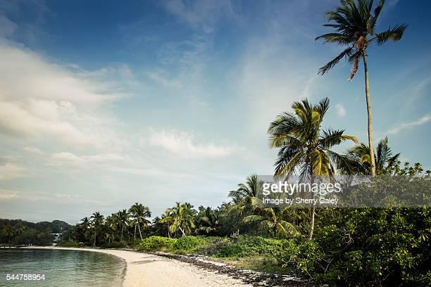 tahiti beach, elbow cay, bahamas - abaco islands stock photos and pictures