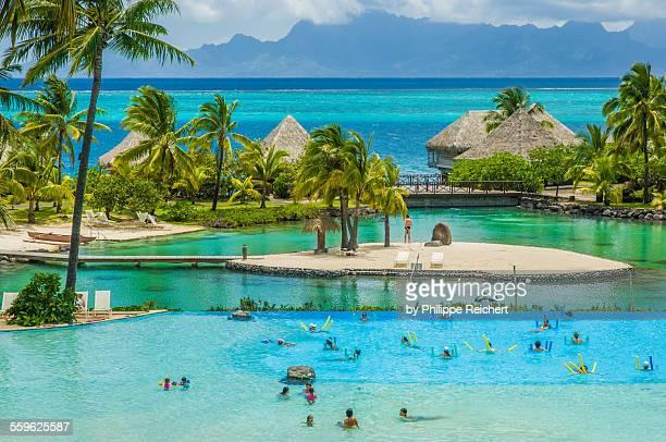 tahiti-moorea - tahiti stock pictures, royalty-free photos & images