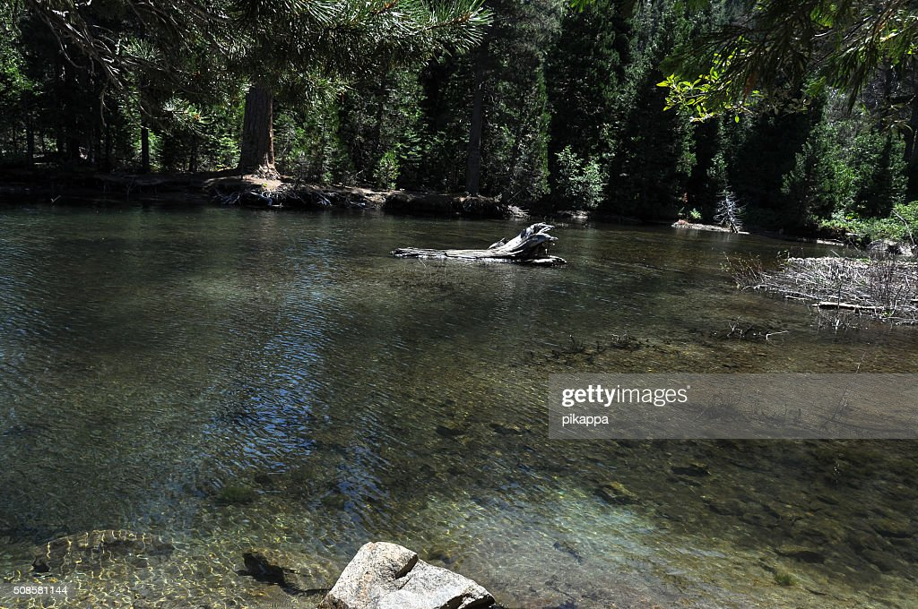 Tahoe Lake, California : Stock Photo