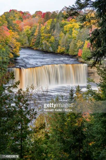 tahquamenon autumn - upper peninsula stock pictures, royalty-free photos & images