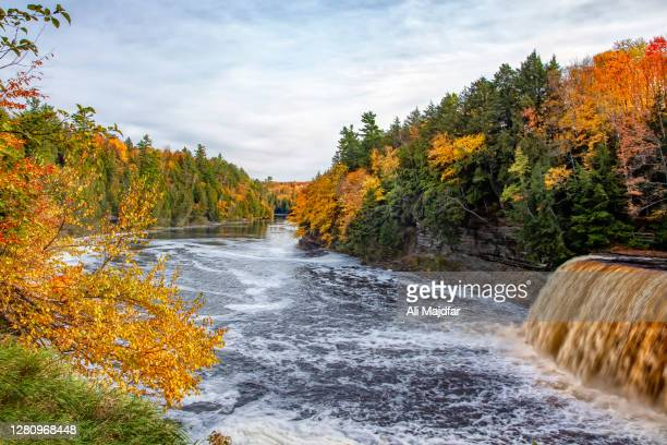 tahquamenon falls in autumn - wilderness area stock pictures, royalty-free photos & images