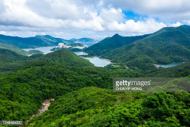 reservorio tai tam en antena - asia pacífico fotografías e imágenes de stock