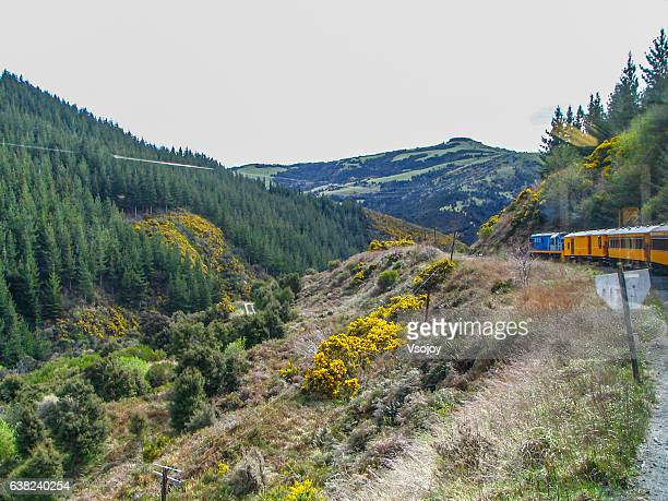 taieri george railways journey, dunedin, new zealand - dunedin new zealand stock pictures, royalty-free photos & images