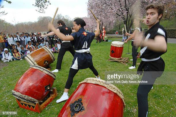 Taiko drummers entertain the crowd during the Cherry Blossom Festival at the Brooklyn Botanic Garden