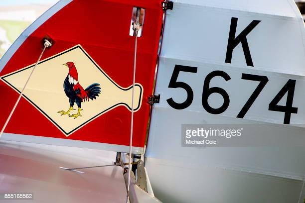 Tail fin of 1935 Hawker Fury Mk1 provided by Guy Black for the Freddie March Spirit of Aviation display at Goodwood on September 8th 2017 in...