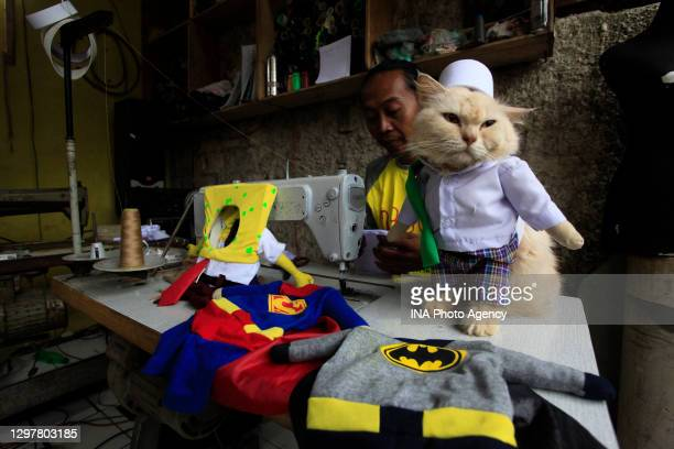 Tailor, Fredi Lugina works on costume accessories for cats in a workshop in Bogor, West Java, Indonesia, December 6, 2020. Costume for cats with...