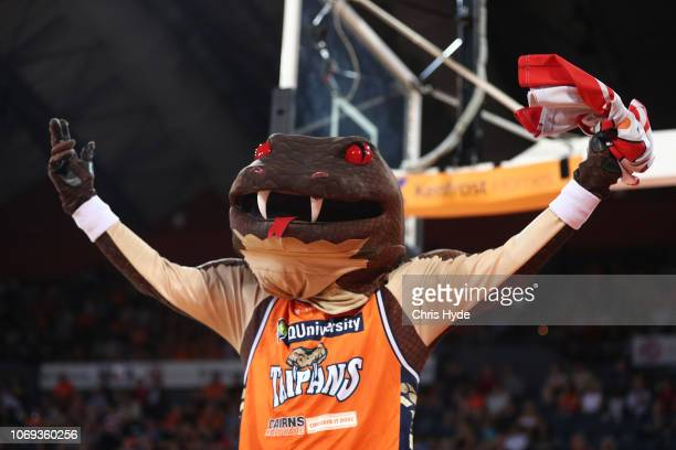 Taipan mascot during the round eight NBL match between the Cairns Taipans and the Illawarra Hawks at Cairns Convention Centre on December 7 2018 in...